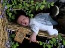Những câu chúc ngủ ngon hay nhất, ý nghĩa nhất
