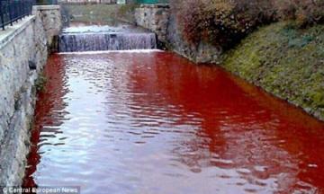Sự thật 100% về dòng sông máu