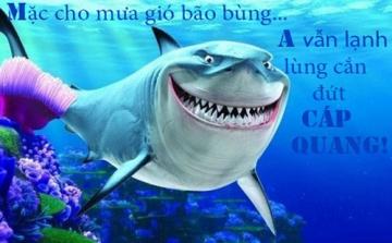 Ảnh chế hài hước: Khi cáp quang biển bị dứt