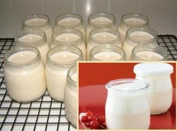 Cách làm sữa chua mịn đặc cực ngon tại nhà