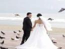 Lộ album ảnh cưới đẹp lung linh của Lam Trường