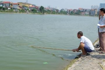 Thấy bạn chới với giữa hồ, ném đá cho chết hẳn