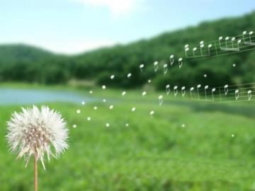10 mẩu chuyện đáng suy ngẫm về đời sống
