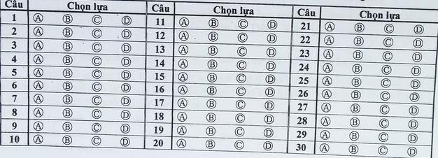 Hướng dẫn làm bài khảo sát tiếng Anh vào lớp 6 THPT Trần Đại Nghĩa 2015
