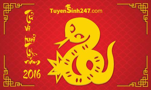 Vận hạn người tuổi Tỵ năm Bính Thân 2016