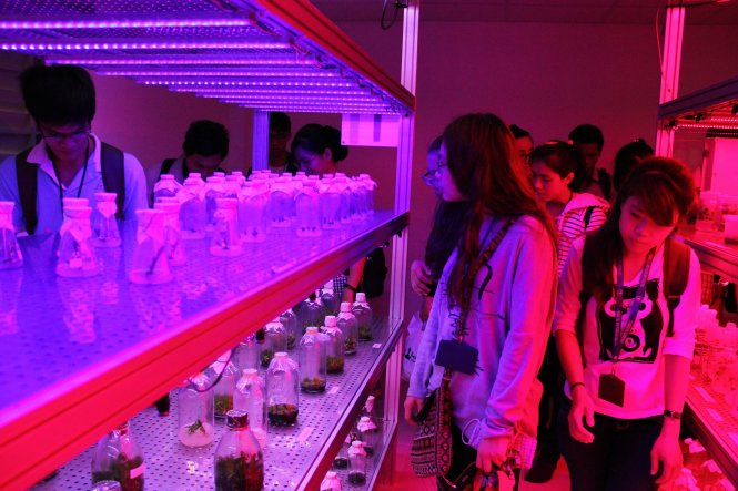 Ra mắt Phòng thí nghiệm ứng dụng LED