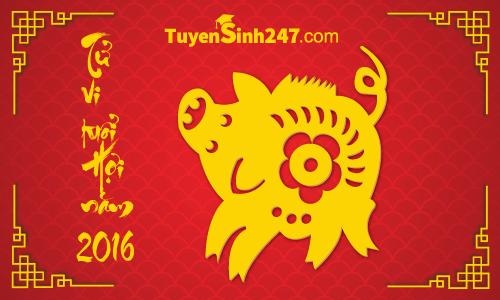 Vận hạn người tuổi Đinh Hợi năm Bính Thân 2016