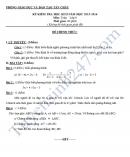 Đề thi học kì 2 lớp 8 môn Toán - Phòng GD&ĐT Tân Châu 2016
