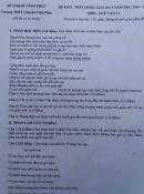 Bài hát 'Lạc trôi' vào đề văn lớp 11 gây tranh cãi