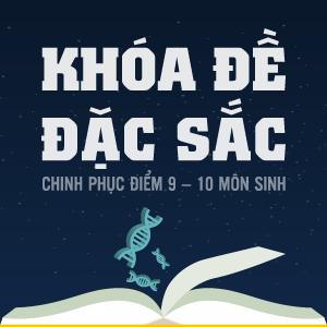 KHÓA ĐỀ ĐẶC SẮC - CHINH PHỤC ĐIỂM 9 - 10