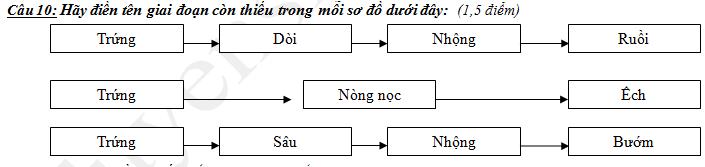De thi ki 2 lop 5 mon Khoa hoc 2018 - TH Tran Thoi 2