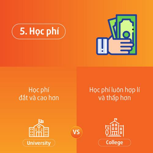 "Phan biet su khac nhau giua ""University"" va ""College"""