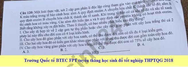 Dap an cua Bo GD de thi THPT Quoc Gia 2018 mon Sinh - ma de 205