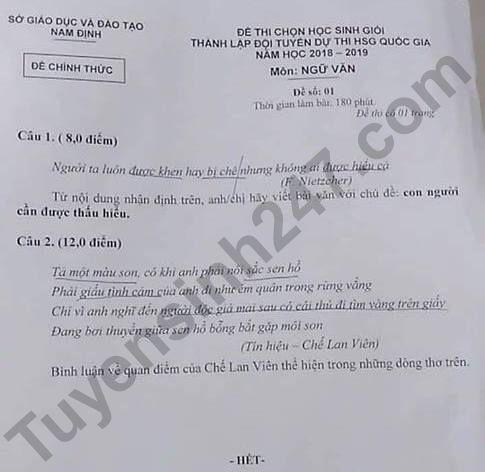 De thi chon hoc sinh gioi QG mon Van 2019 - So GD Nam Dinh
