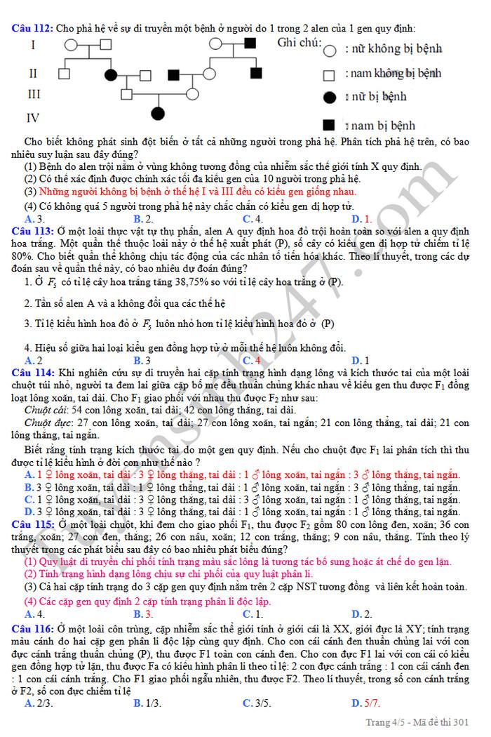 De thi thu THPTQG mon Sinh nam 2019 - THPT Quynh Luu 4 lan 3