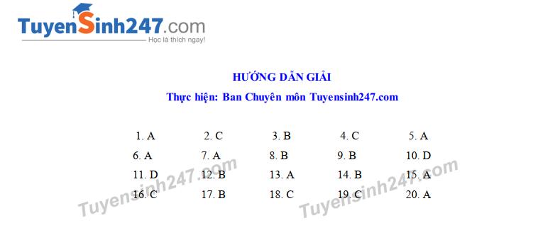Dap an de thi vao lop 10 mon Tong hop nam 2019 So GD Vinh Phuc
