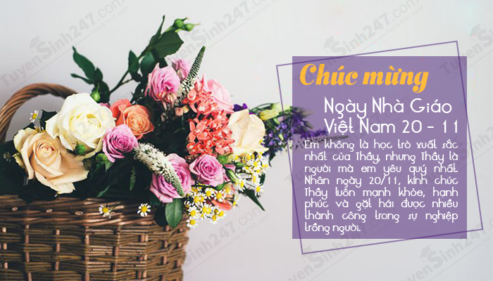 Bo thiep chuc mung ngay nha giao Viet Nam 20/11 y nghia