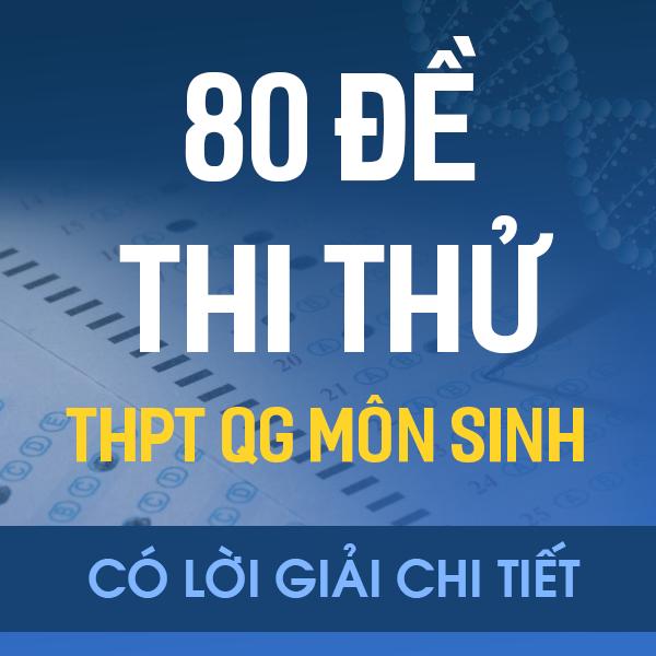 80 đề thi thử THPT QG môn Sinh của các trường THPT chuyên trên cả nước năm 2020 (có lời giải chi tiết)