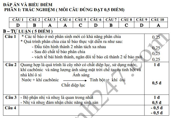 De thi cuoi ki 1 lop 6 mon Sinh THCS Van Nhan nam 2019-2020