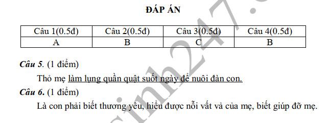 De thi ki 1 mon Tieng Viet lop 2 TH Tan Hiep 2019