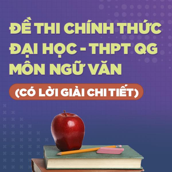 S3 - Đề thi chính thức Đại học - THPT Quốc gia môn Ngữ Văn từ năm 2010 - 2020 (có lời giải chi tiết)