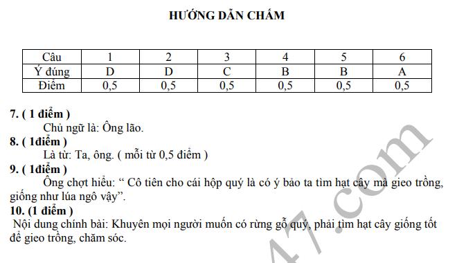 De thi giua ki 2 mon Tieng Viet lop 5 - TH Tan Hiep 2020