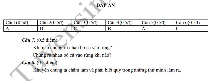 De thi ki 2 mon Tieng Viet lop 2 - TH Tan Hiep 2020