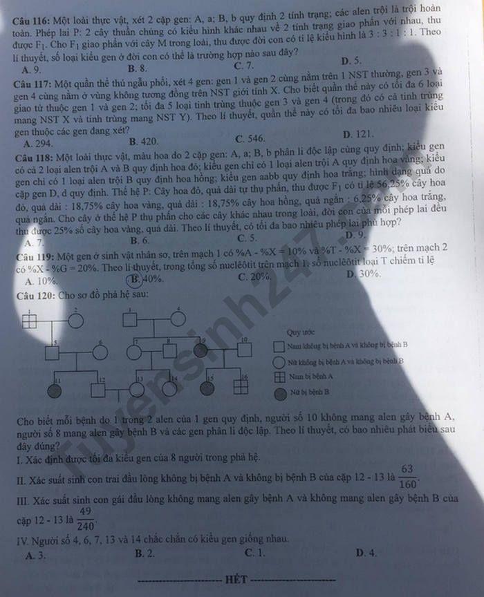 Dap an de thi mon Sinh ma de 218 thi tot nghiep THPT nam 2020