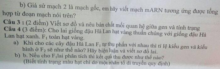 De kiem tra giua HK1 nam 2020 THCS Nguyen Khuyen Sinh lop 9