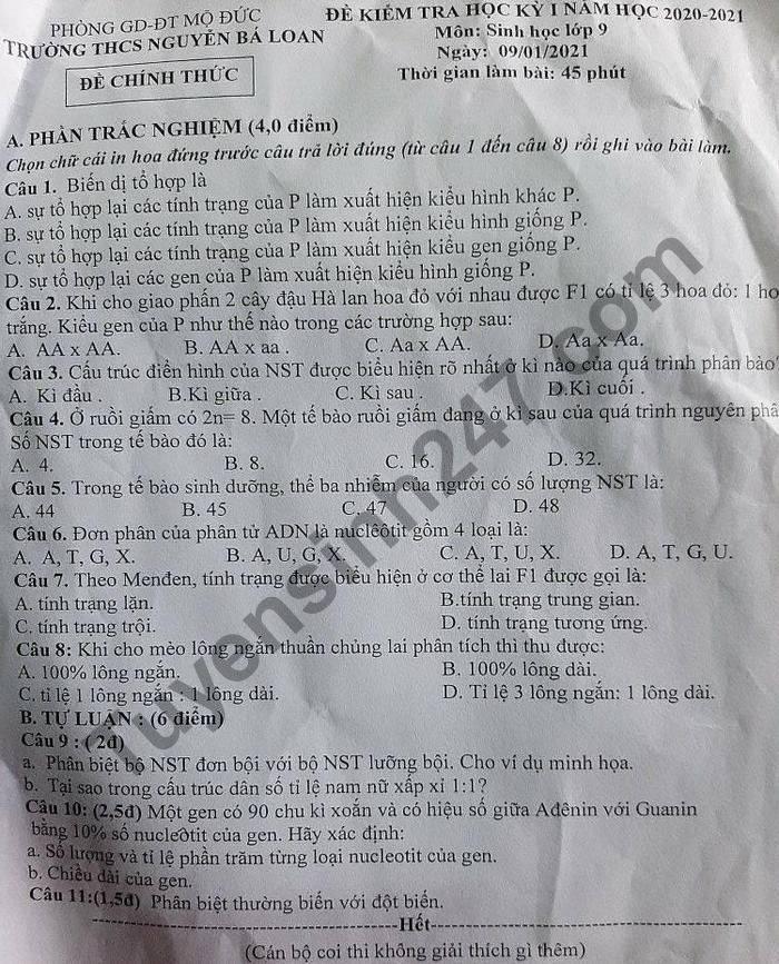 De thi hoc ki 1 lop 9 mon Sinh THCS Nguyen Ba Loan nam 2020