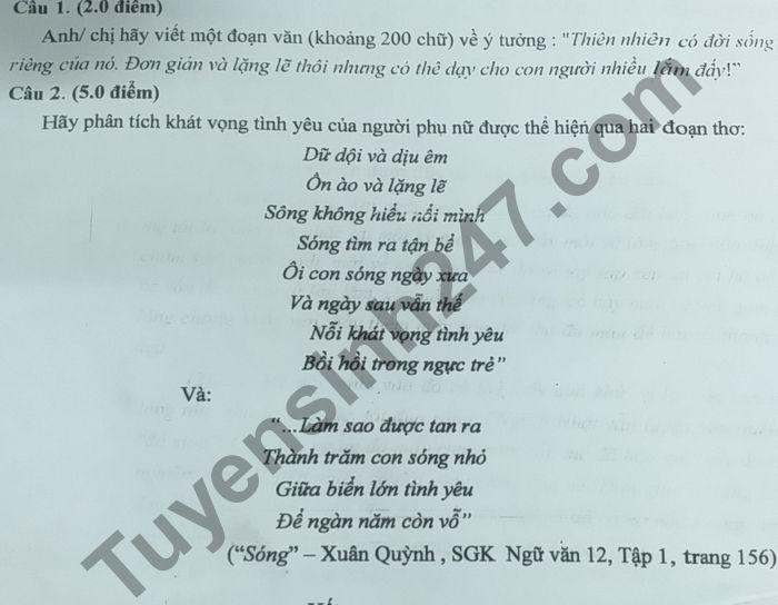 De thi thu Tot nghiep THPT 2021 lan 1 mon Van THPT Chuyen Nguyen Binh Khiem