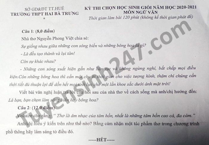De thi chon hoc sinh gioi nam 2021 mon Van THPT Hai Ba Trung