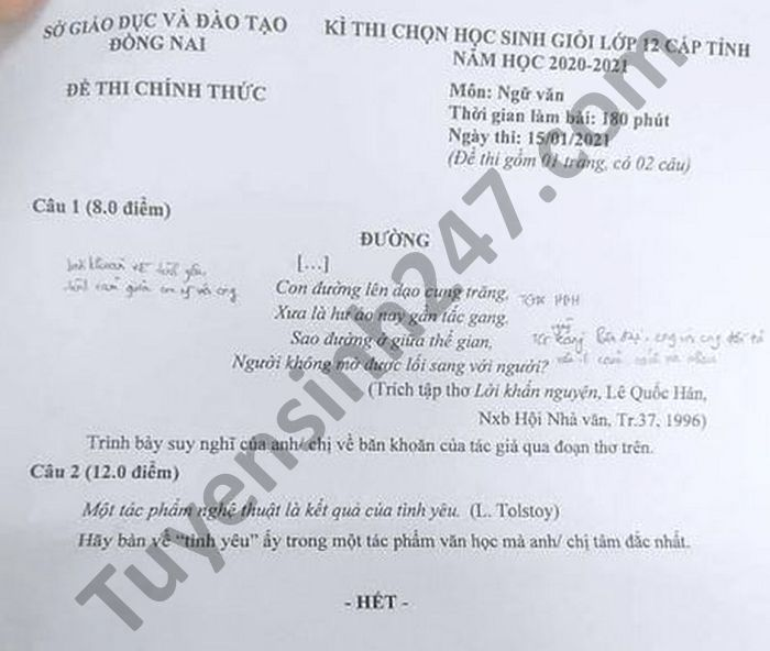 De thi hoc sinh gioi cap Tinh mon Van lop 12 tinh Dong Nai nam 2021