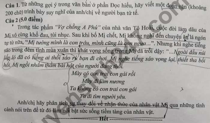 De thi thu tot nghiep THPT 2021 mon Van THPT Mo Trang