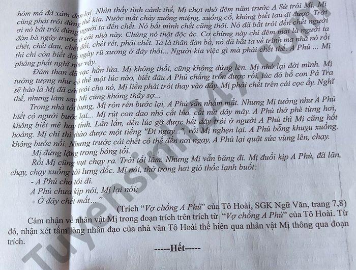 De thi hoc ki 2 THPT Nguyen Huu Canh mon Van lop 12 nam 2021