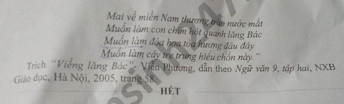 De thi hoc ki 2 mon Van lop 9 THCS Tan Hoa Thanh nam 2021