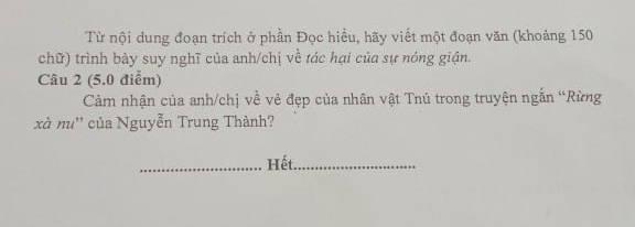 De thi ki 2 lop 12 mon Van - THPT Muong Lam 2021