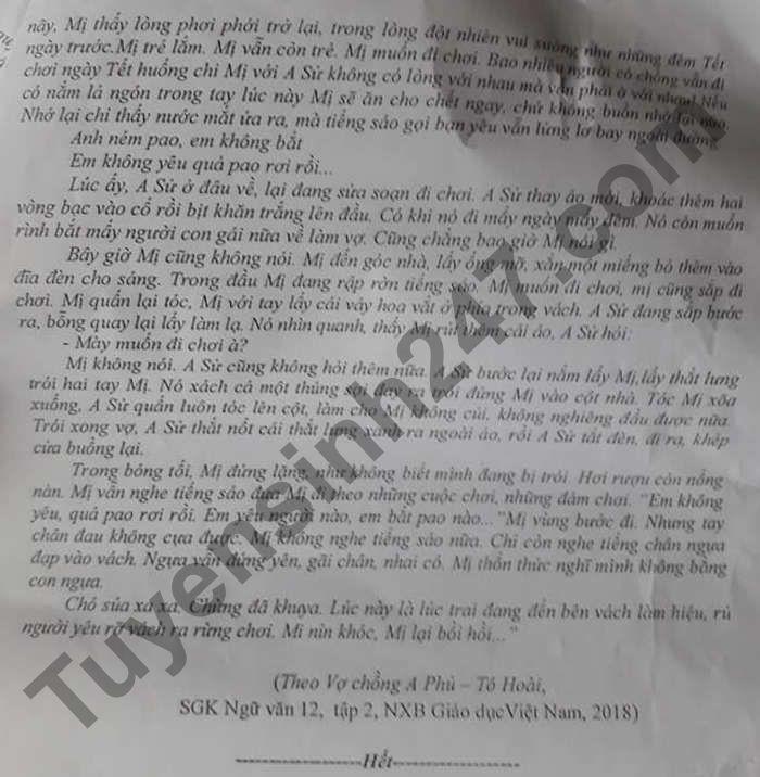 De thi thu tot nghiep THPT 2021 mon Van - tinh Ninh Binh lan 2