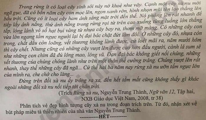 De thi thu tot nghiep THPT mon Van 2021 - THPT Ninh Binh-Bac Lieu lan 7