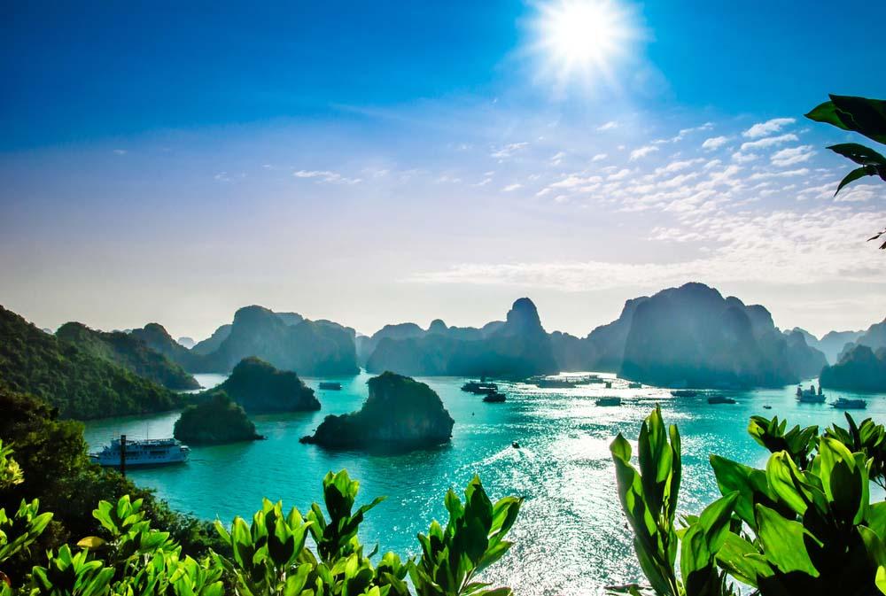 Tu vi 12 cung hoang dao Chu Nhat ngay 11/7/2021