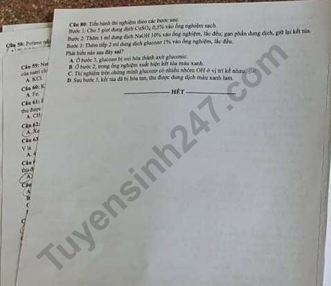 Dap an de thi tot nghiep THPT mon Hoa 2021 - Ma de 219