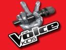 Giọng hát việt Nhí - The Voice Kids Việt Nam lên sóng 2013