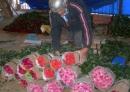 Bỏ Tết để cắt hoa phục vụ Valentine