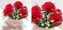 Hoa cẩm chướng lung linh xua tan tiết trời u ám
