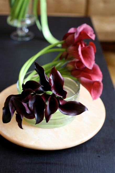 hoa đẹp 20/10-2