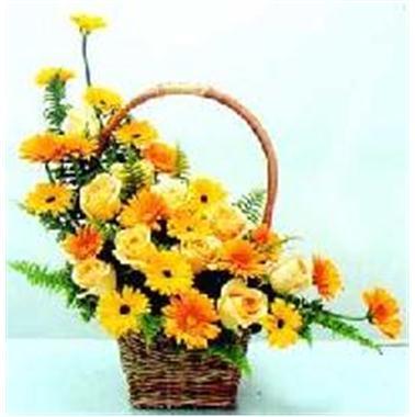 Hướng dẫn cắm hoa và thuyết trình ngày 20/11