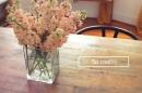 Hướng dẫn cách cắm hoa phi yến đón Tết cực đơn giản