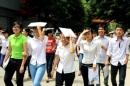Đại học Nông Lâm TPHCM công bố điểm chuẩn NV2 năm 2014