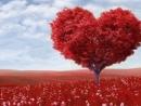 Những câu danh ngôn về tinh yêu hay nhất
