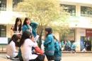 Mã trường THPT tại tỉnh Thái Bình